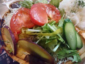 島原野菜のサラダ
